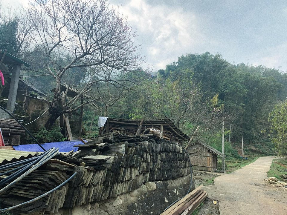 Ban Ta Van Hoang So Va Binh Di
