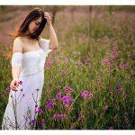 Hoa Oải Hương ở Sapa