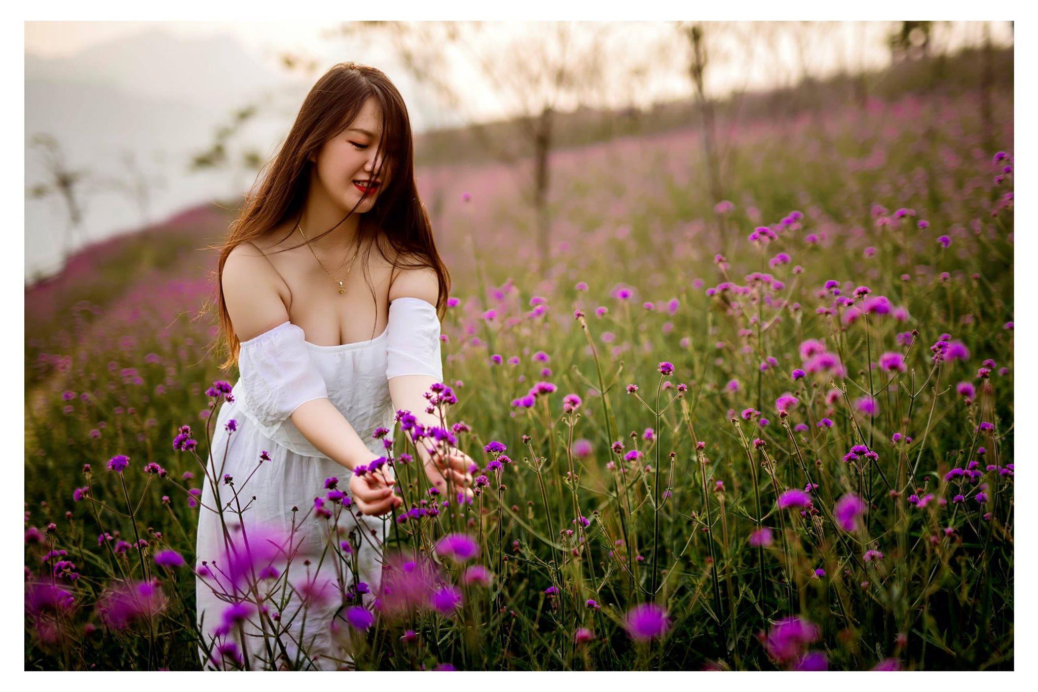 Hoa Oai Huong Sapa (3)