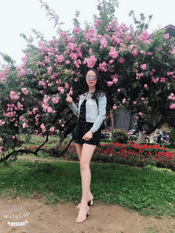 Hoa Hong Leo Sapa (3)