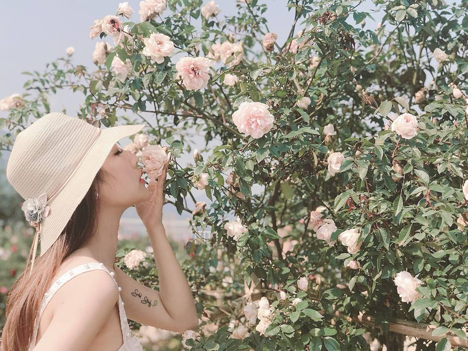 Vườn hồng cổ Sapa