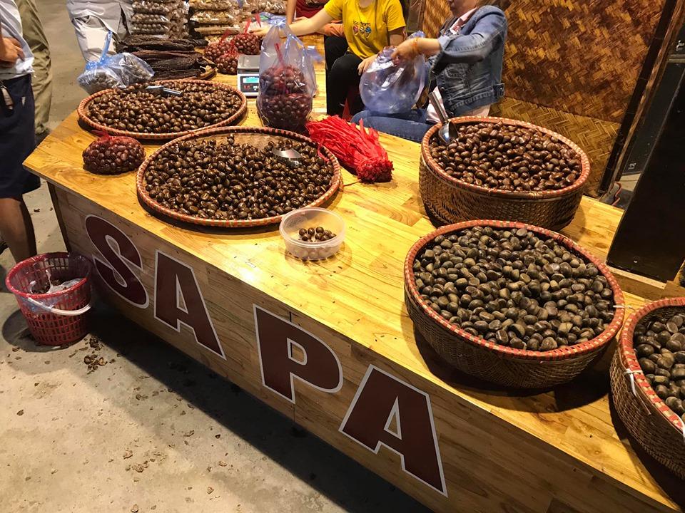Mua hạt dẻ ở Sapa